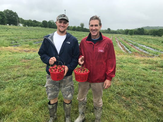 Jon Kelley and his son Hunter Kelley show off some of this seasons crop on their third-generation strawberry farm in Castalian Springs.