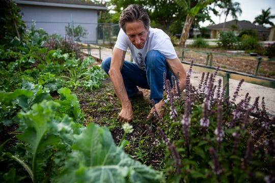 Sean McCabe weeds a bed at a community garden on 98th Avenue North in Naples Park on Tuesday, May 7, 2019. Collier County cited the garden for code violations, but the county has since given the garden an OK to continue operating.