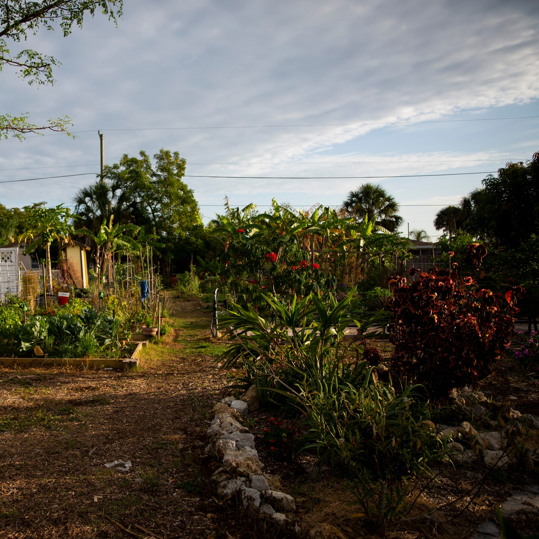 Community garden grows discontent with neighbors, faces county code complaints