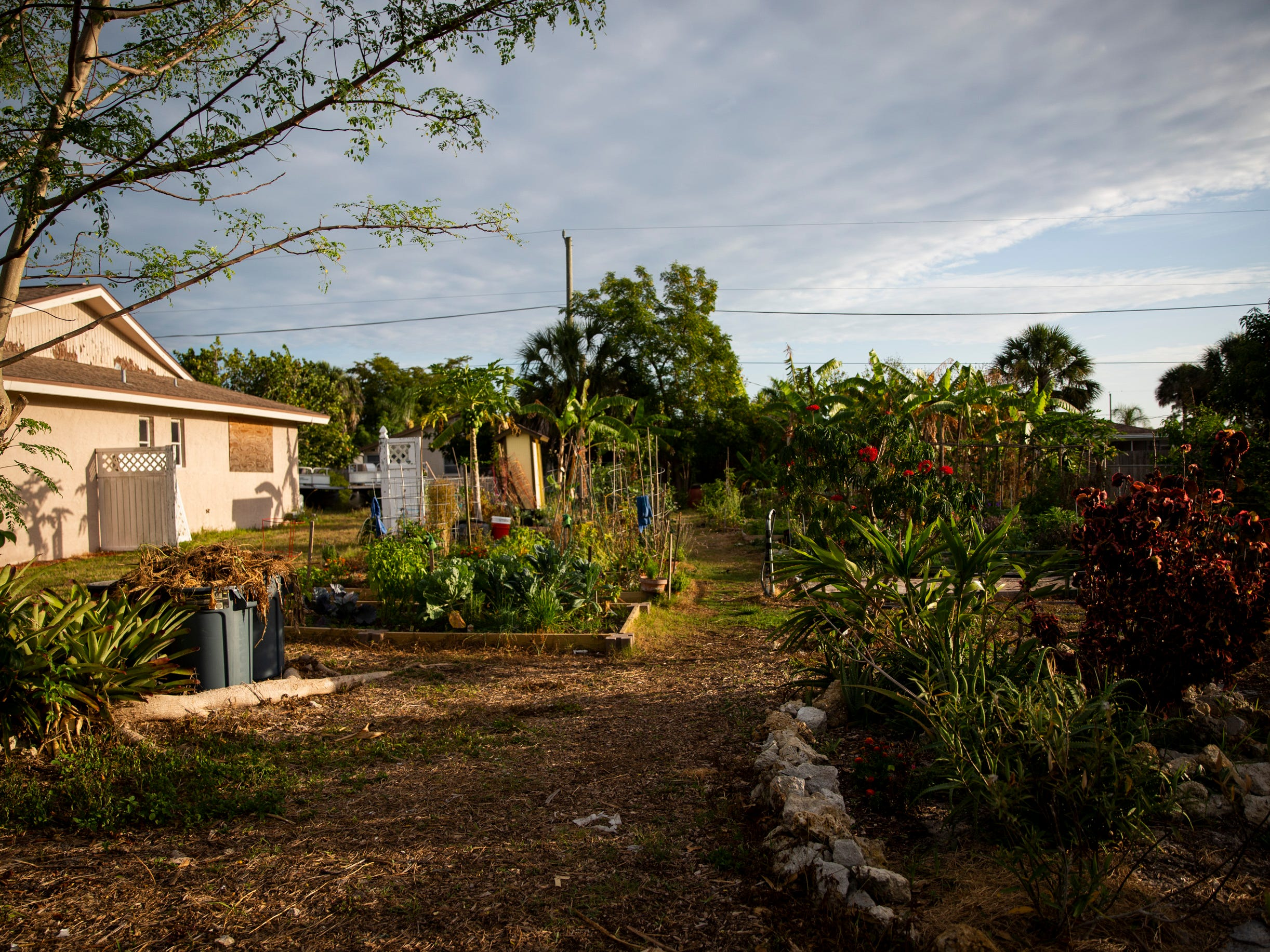 A community garden sits on a lot between two houses on 98th Avenue North in Naples Park on Tuesday, May 7, 2019. Some neighbors have complained about the garden, saying that it has attracted rodents and has led to cars parked on lawns and blocking driveways, and the garden recently received a code enforcement complaint and a notice of violation.