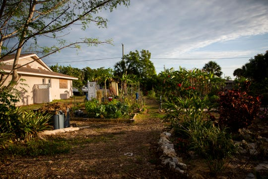 A community garden sits on a lot between two houses on 98th Avenue North in Naples Park on Tuesday, May 7, 2019. Some neighbors have complained about the garden, saying that it has attracted rodents and has led to cars parked on lawns and blocking driveways. The garden received a code enforcement complaint and a notice of violation, but the garden has since gotten an OK from the county.