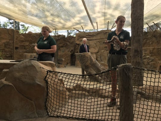 Naples Zoo employees show some of the attraction's animals ahead of Collier's annual state of tourism address Tuesday, May 7, 2019. Jack Wert, Collier County's tourism director, gave the address.