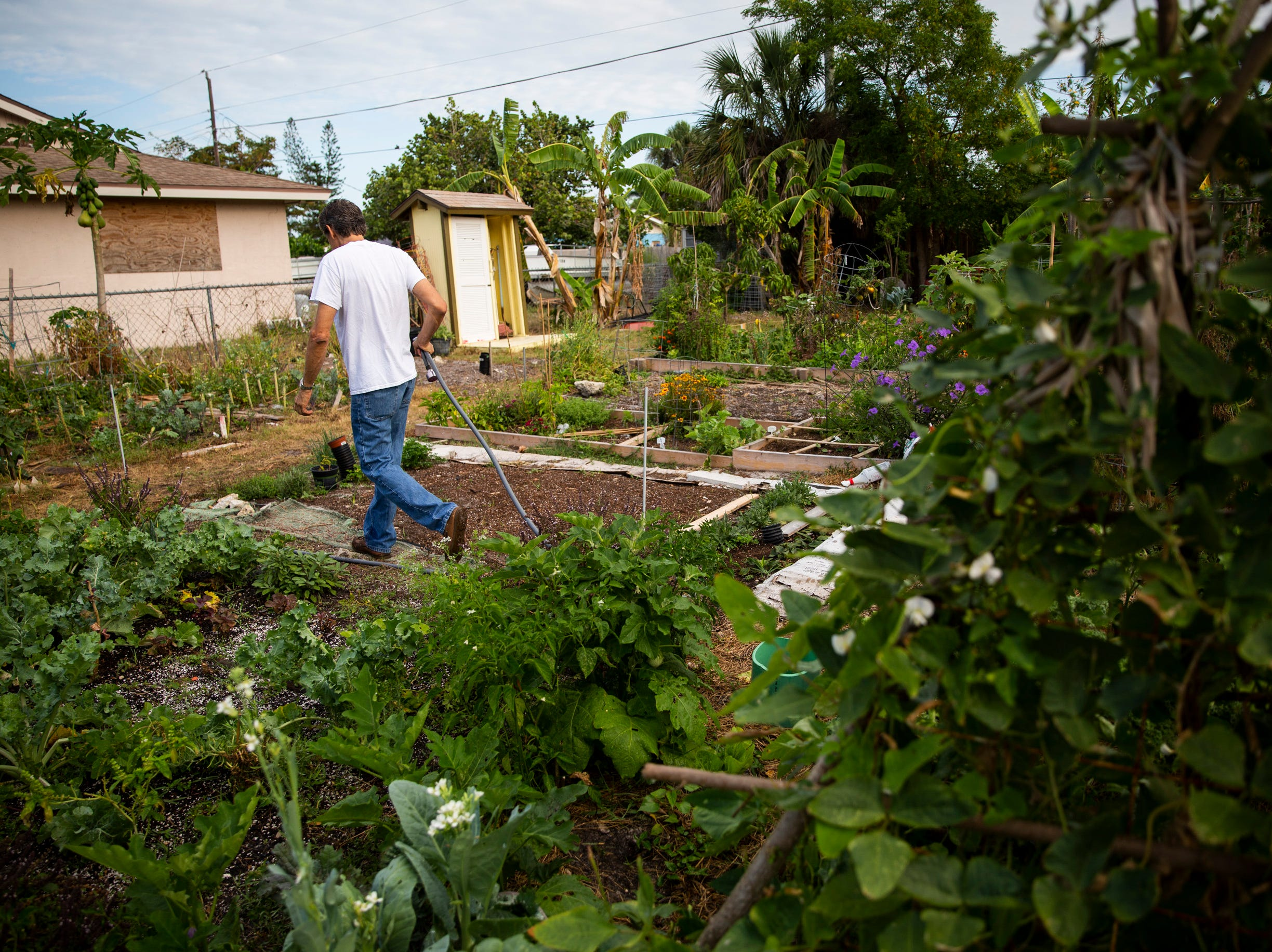 Sean McCabe walks through a community garden on 98th Avenue North in Naples Park on Tuesday, May 7, 2019.