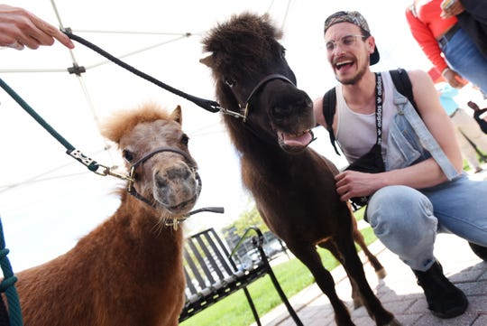Two miniature therapy horses from Hope's Promise visit the campus of Montclair State University to calm students on Tuesday, May 7, 2019. Ravi, left, and Michelangelo with Sophomore Joe Fernandez.