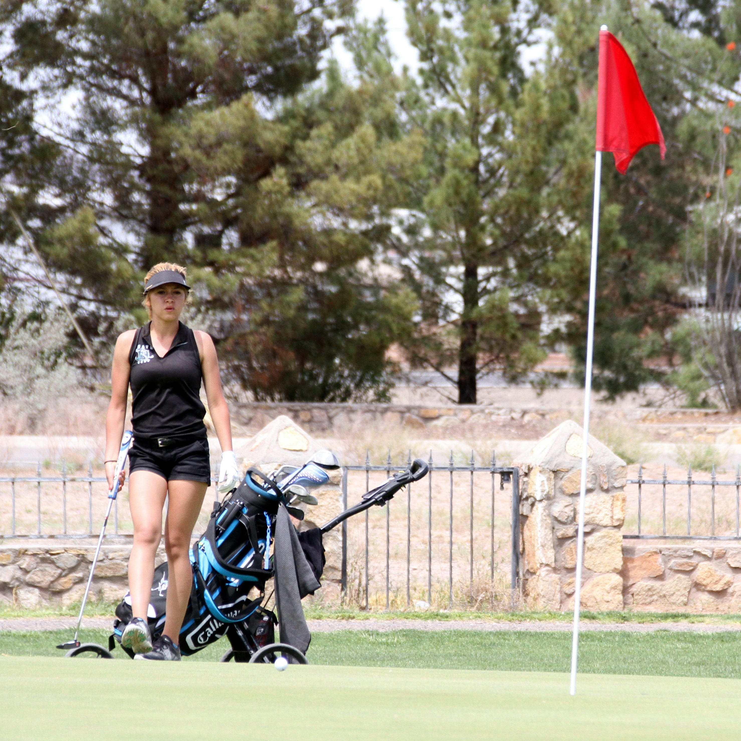 Las Cruces girls win district golf title