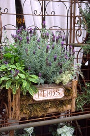 Select a cute container and stuff it with herbs mom will love.