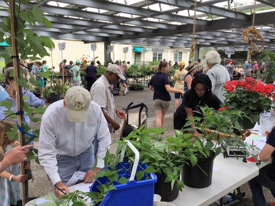Pick out the right plant for the right place at the UF/IFAS Extension Leon County Open House and Plant Sale on May 11.