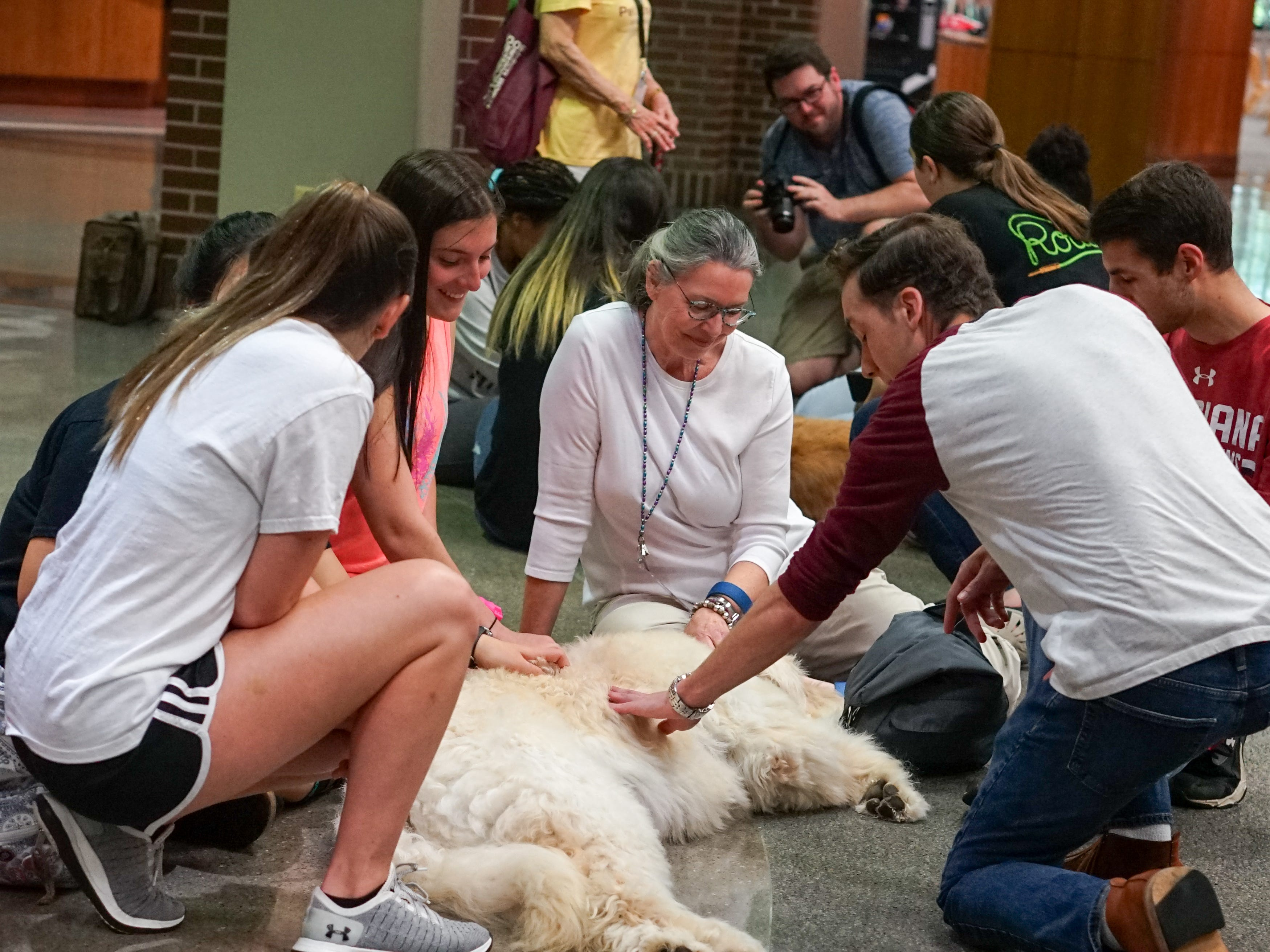 Students pet a therapy dog in the Edith Garland Dupré Library Wednesday, May 8, 2019. The University of Louisiana at Lafayette helps students to relieve stress during finals week by bringing therapy animals, to the library as part of Stress Relief Week. The therapy dogs are provided by Pet Partners of Acadiana, a non-profit organization with registered therapy animals, including birds, miniature horses, rabbits and  llamas.