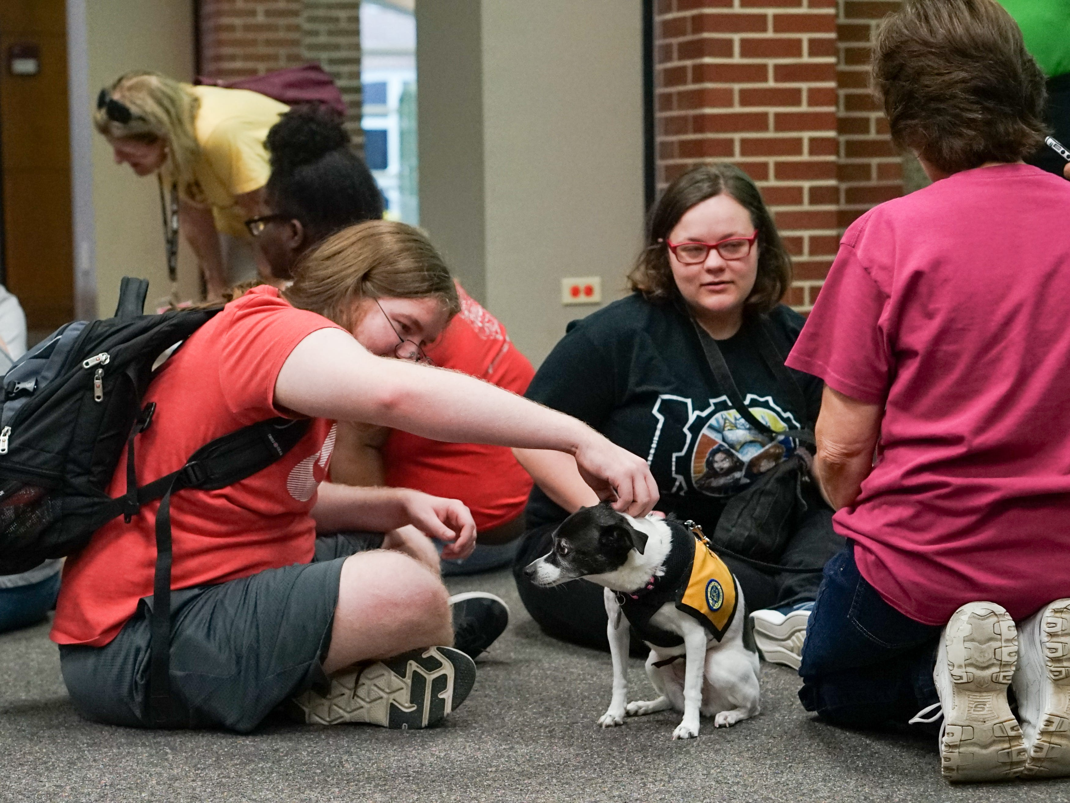 Students crowd around a therapy dog in the Edith Garland Dupré Library Wednesday, May 8, 2019. The University of Louisiana at Lafayette helps students to relieve stress during finals week by bringing therapy animals, to the library as part of Stress Relief Week. The therapy dogs are provided by Pet Partners of Acadiana, a non-profit organization with registered therapy animals, including birds, miniature horses, rabbits and  llamas.