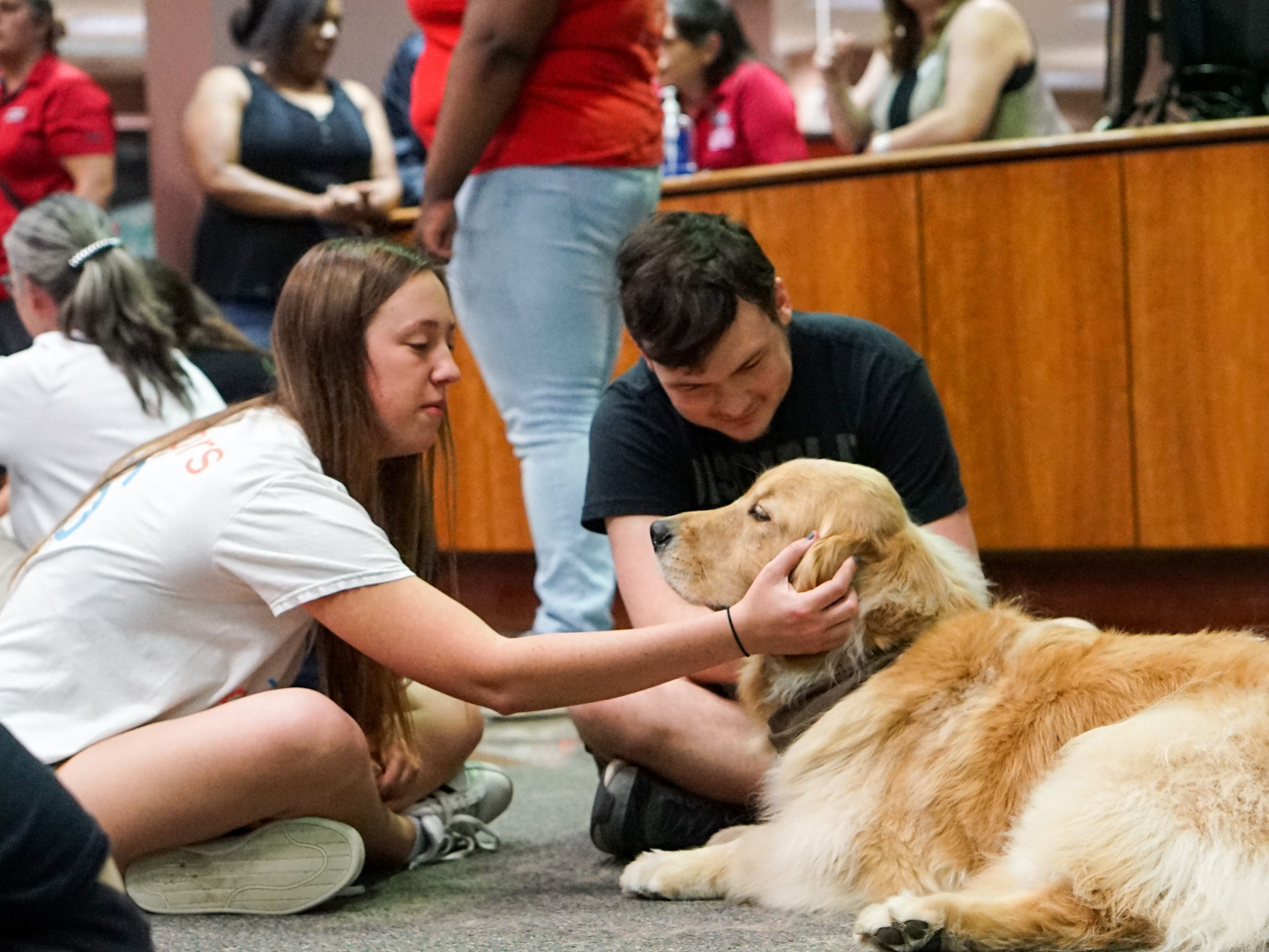 Students relieve stress by meeting and petting a therapy dog in the Edith Garland Dupré Library Wednesday, May 8, 2019. The University of Louisiana at Lafayette helps students to relieve stress during finals week by bringing therapy animals, to the library as part of Stress Relief Week. The therapy dogs are provided by Pet Partners of Acadiana, a non-profit organization with registered therapy animals, including birds, miniature horses, rabbits and  llamas.