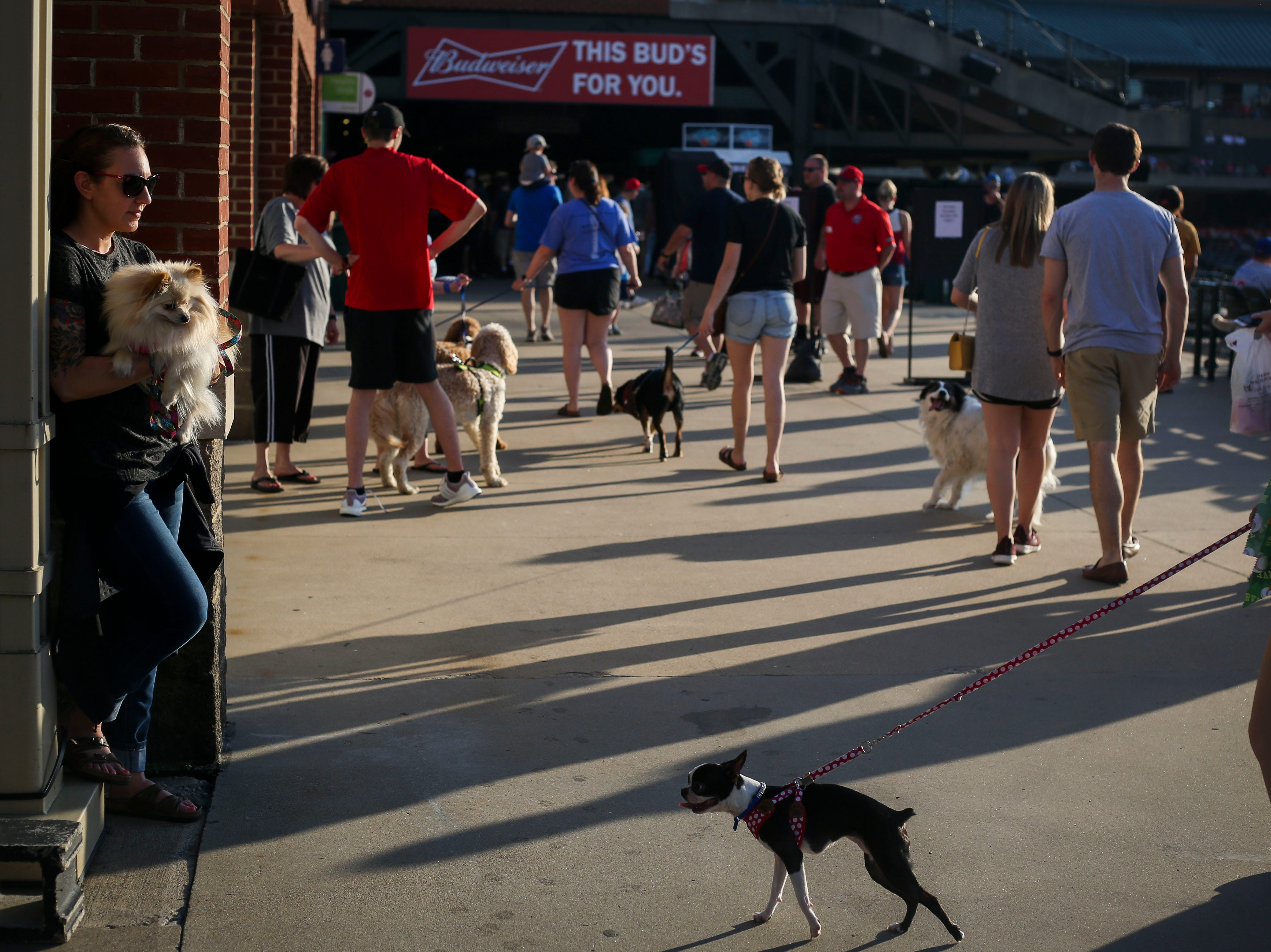 Juli Baranello, left, holds her dog Talulah during the Louisville Bats v. Syracuse Mets game during Dog Day Nights at Louisville Slugger Field in downtown Louisville, Ky. on Tuesday, May 7, 2019.