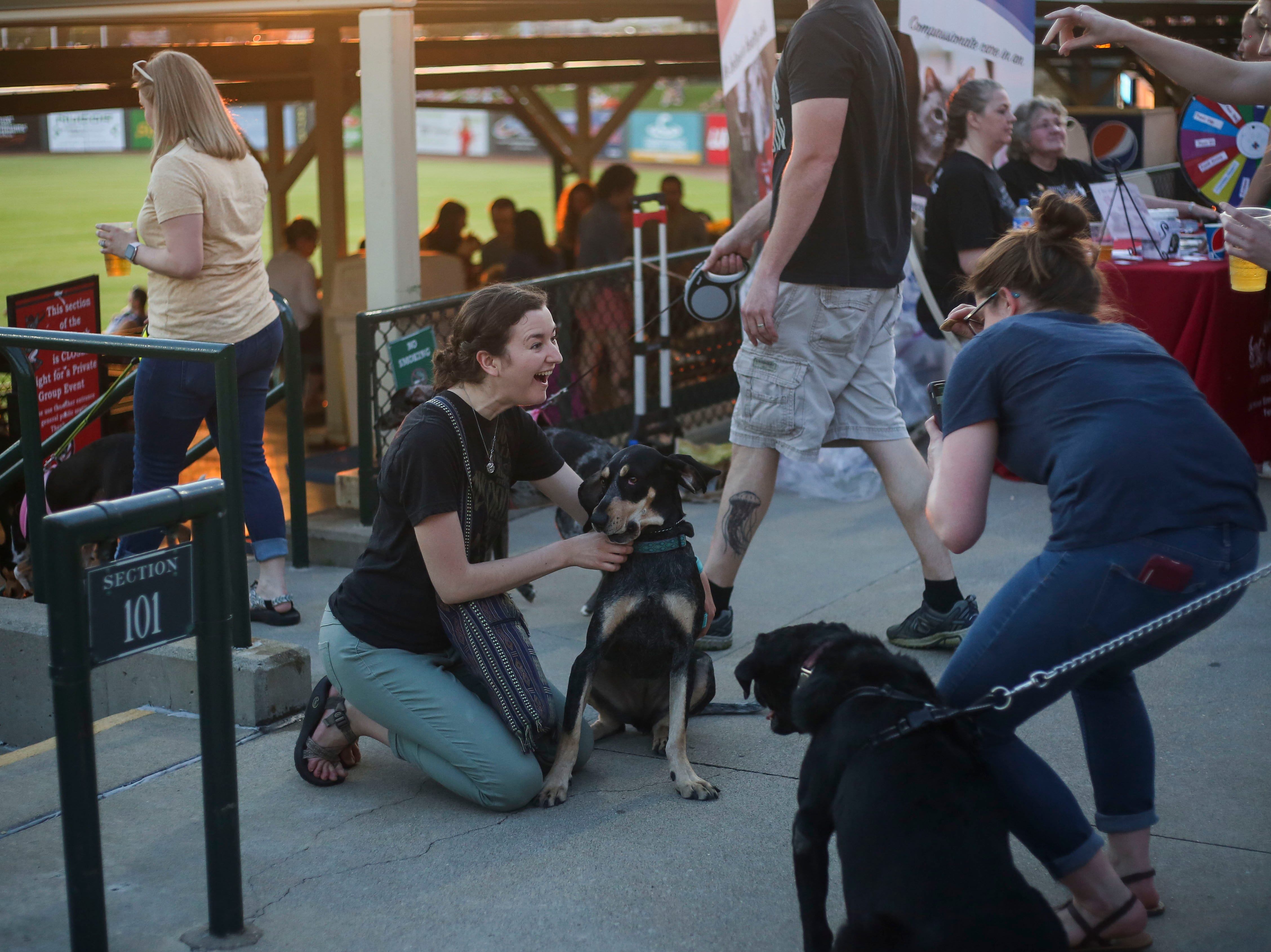 Becca Harpring tries to get her coonhound Biridie to look at a camera for a photo during the Louisville Bats v. Syracuse Mets game during Dog Day Nights at Louisville Slugger Field in downtown Louisville, Ky. on Tuesday, May 7, 2019.