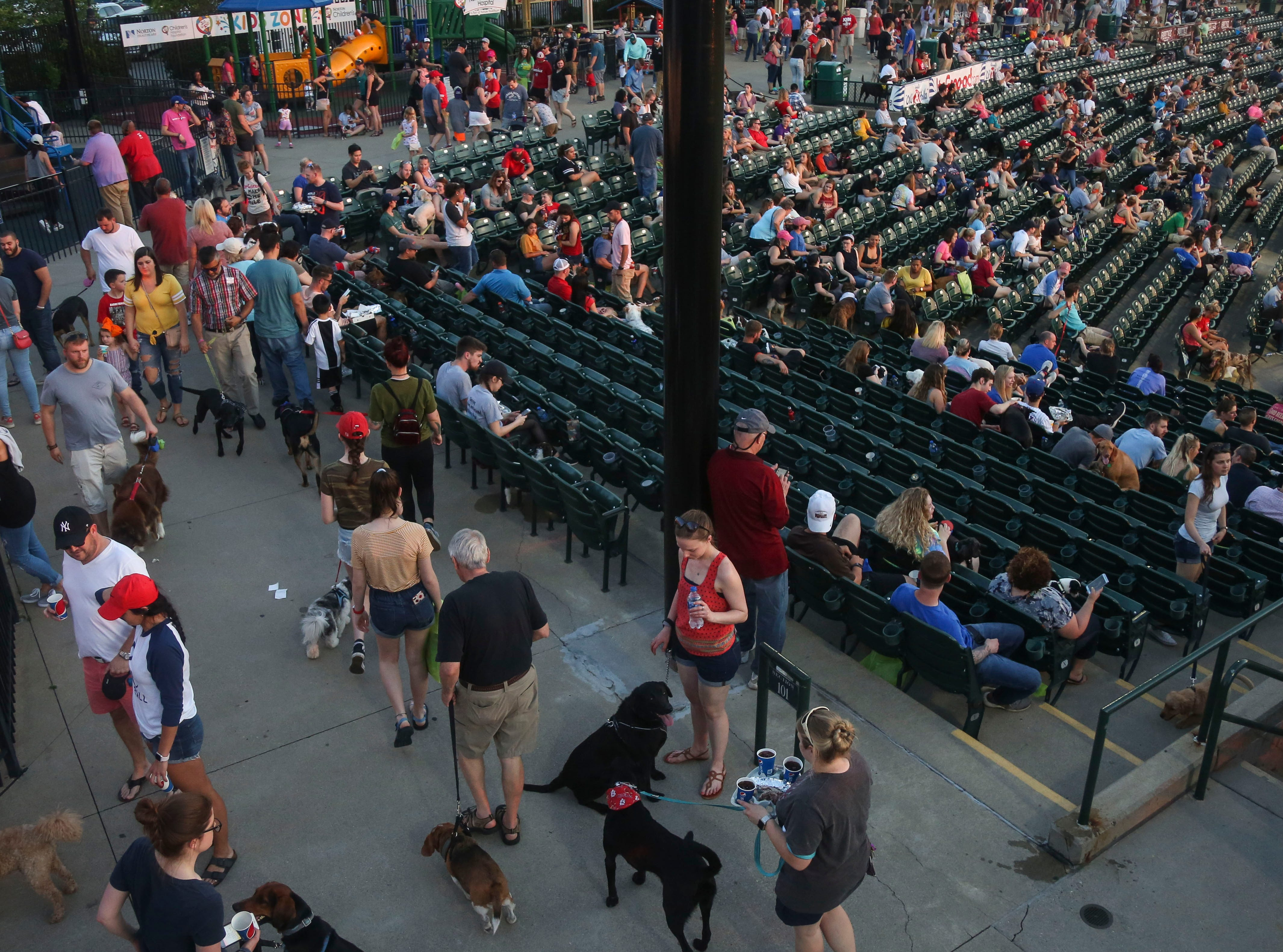 902 dogs showed up to watch the Louisville Bats v. Syracuse Mets game during Dog Day Nights at Louisville Slugger Field in downtown Louisville, Ky. on Tuesday, May 7, 2019.