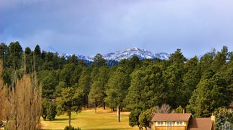 The Village of Ruidoso lies within 4,831 square feet of forest surrounded by the Sacramento Mountains, and home to amazing wildlife.
