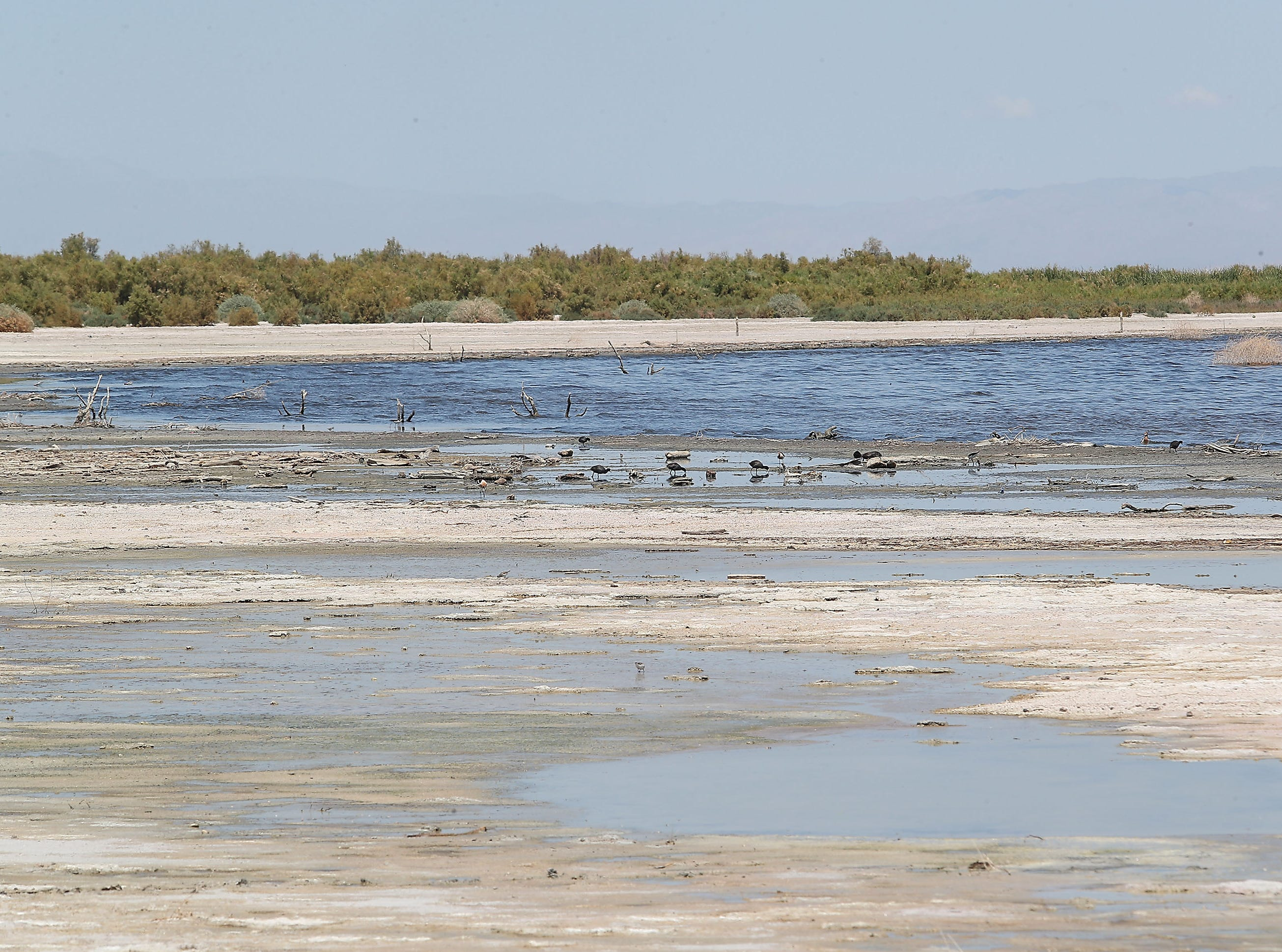 Stagnant water and mud pools just beneath the surface of the playa where the Salton Sea continues to shrink at the northwest end of Salton Sea, April 30, 2019.