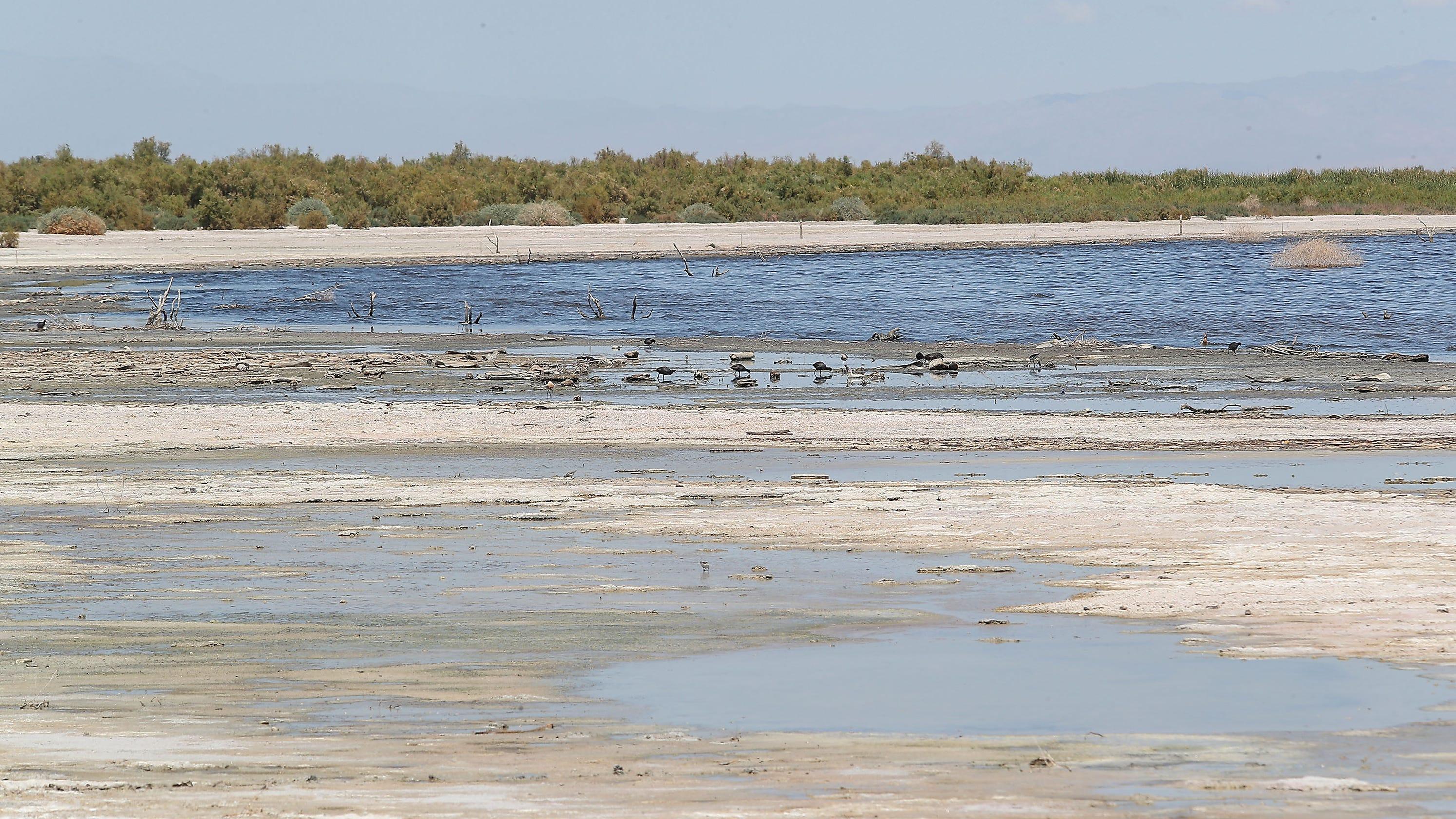 Valley Voice: Seemingly stalled Salton Sea restoration makes ocean water importation key - The Desert Sun