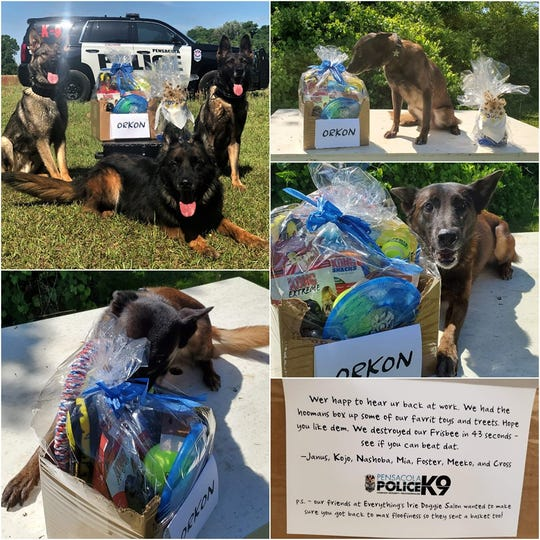 Photos show the before and after shots of a gift basket delivery from the Pensacola Police Department K-9 agency to the Santa Rosa County Sheriff's Office K-9 injured on duty last month.