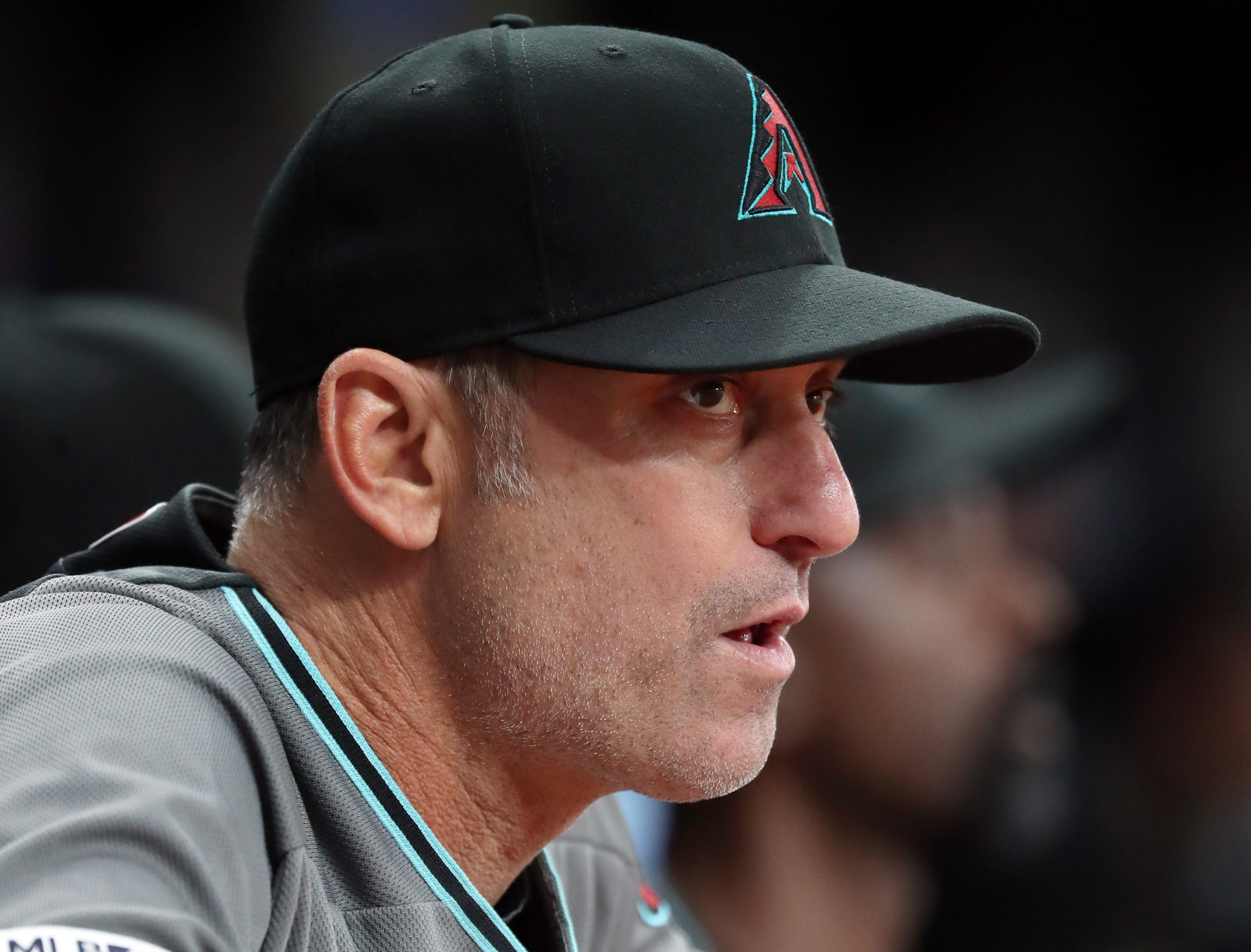 May 7, 2019; St. Petersburg, FL, USA; Arizona Diamondbacks manager Torey Lovullo (17) looks on during the first inning against the Tampa Bay Rays at Tropicana Field. Mandatory Credit: Kim Klement-USA TODAY Sports