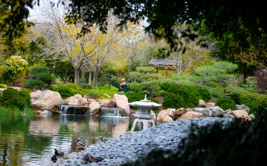 Japanese Friendship Garden, located in the heart of downtown Phoenix, allows visitors to stroll through a peaceful and relaxing park.