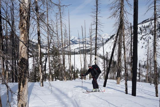 Kelly Gleason, an assistant professor of environmental science at Portland State University, on skis collecting snow samples in the Hogback Basin of Wyoming in 2017. Gleason's work showed the link between wildfires and snowmelt was more widespread and persistent than previously known.