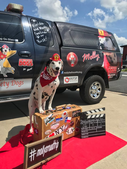 The official Superpower Dogs mascot Molly the Fire Safety Dalmatian will be on hand this weekend at the Challenger Center.