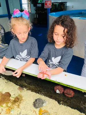 Hadassah Harvell and Apollonia Acevedo check out some of the touch tank creatures at the Gulf Specimen Marine Lab in Panacea.