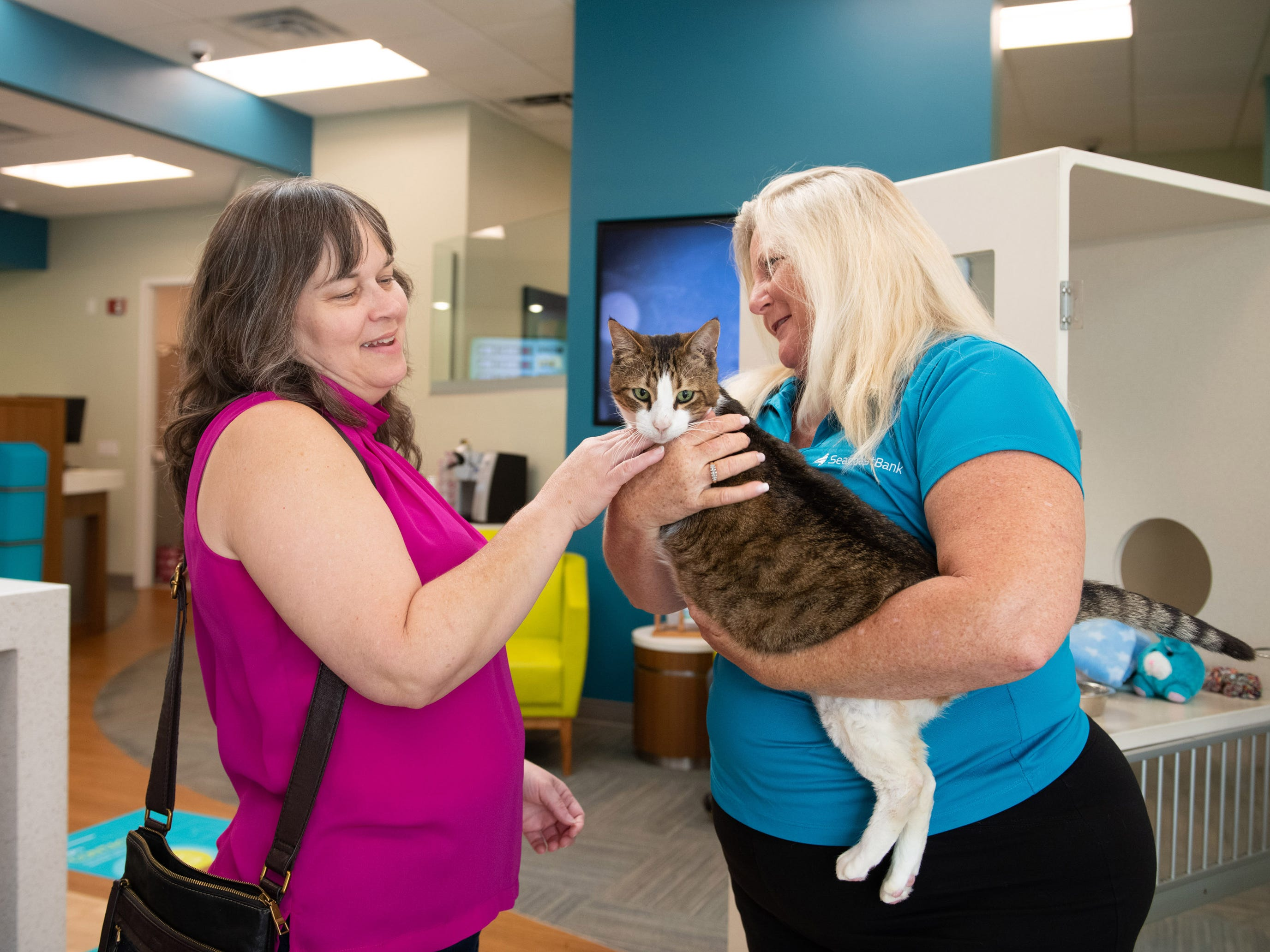 Tammy Morales (left), of Vero Beach, and Seacoast Bank manager Debbie Seagrave take a moment to pet Spork, a four-year-old male cat that is up for adoption at the Seacoast Bank at 6030 20th Street, on Wednesday, May 8, 2019, in Vero Beach. The Humane Society of Vero Beach and Indian River County has partnered with Seacoast Bank to host a new adoptable cat every week at the bank. They received their first adoptable cat from the shelter in October and since then they have had 18 cats adopted from their location.