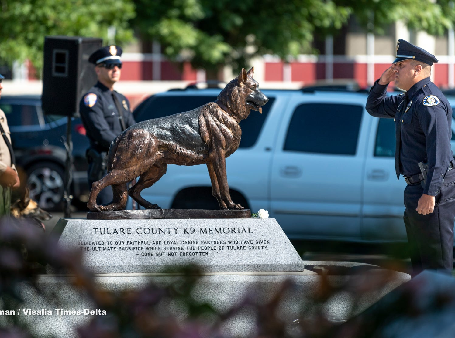 Tulare Police officer Ryan Garcia salutes at the memorial for his partner K-9 Bane during the Tulare County Peace Officer Memorial Ceremony on Wednesday, May 8, 2019. Bane was killed in the line of duty while defending Garcia late in 2018.