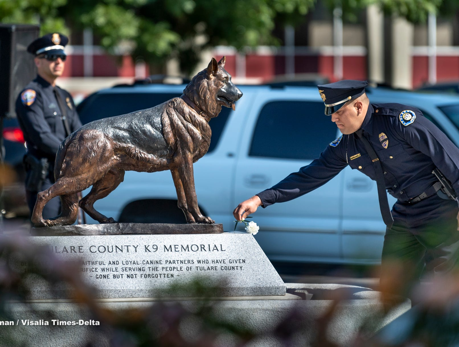 Tulare Police officer Ryan Garcia places a carnation at the memorial for his partner K-9 Bane during the Tulare County Peace Officer Memorial Ceremony on Wednesday, May 8, 2019. Bane was killed in the line of duty while defending Garcia late in 2018.