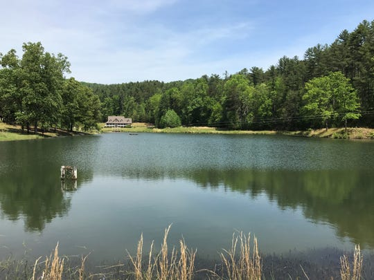 A camp in the mountains of Pickens County could become a new site for a financially troubled New York youth residential facility.