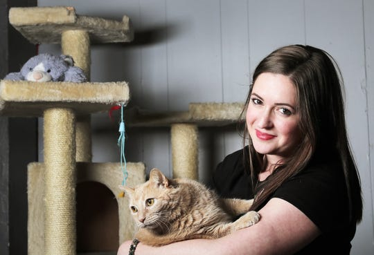 Elizabeth Feldhausen holds Donny, one of the cats available for adoption at Safe Haven Pet Sanctuary in Green Bay. Safe Haven will provide adoptable cats to the coming Pawffee Shop in Grand Chute. Feldhausen is a co-owner of Pawffee Shop and founder of Safe Haven.