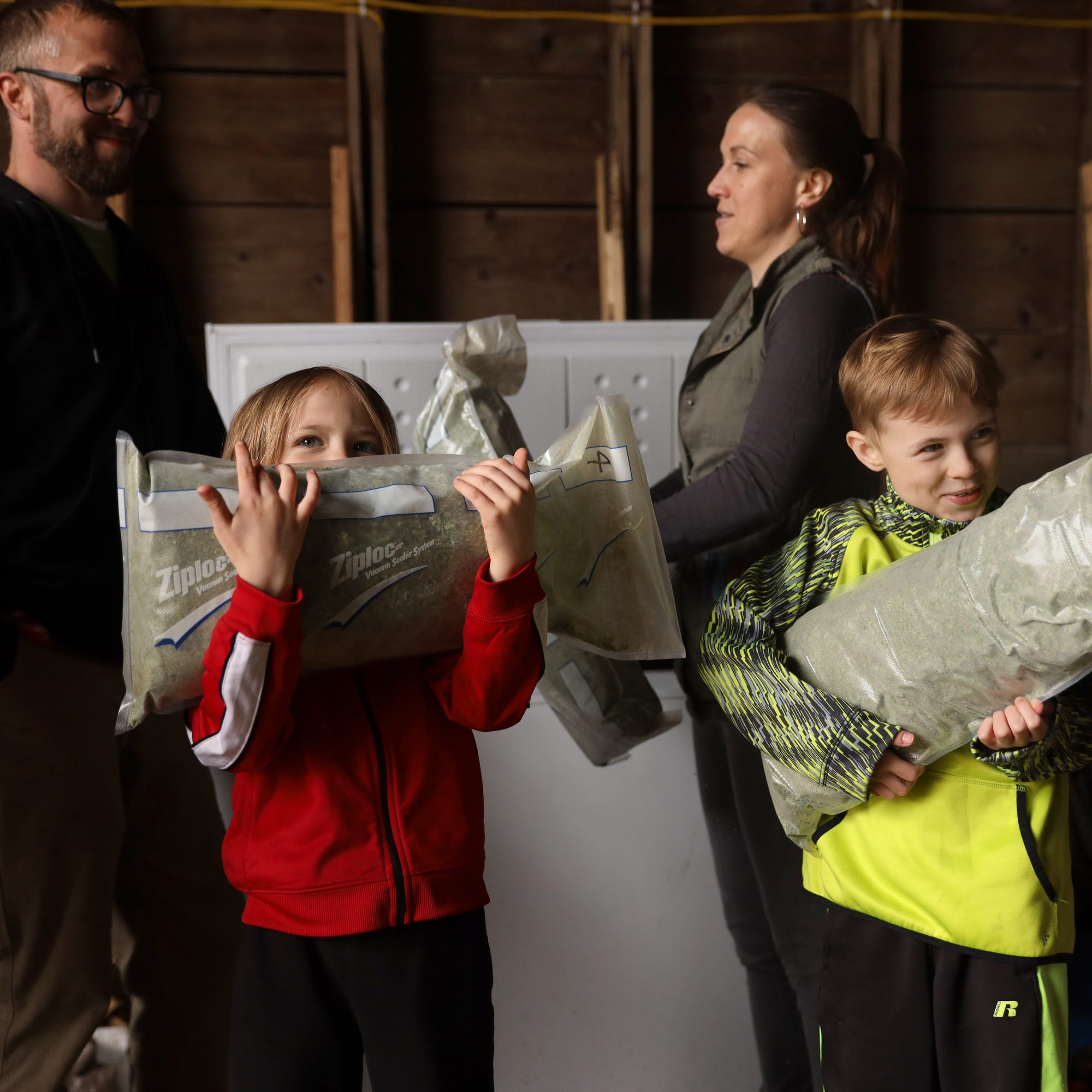 As Wisconsin's new hemp industry blooms, will marijuana be far behind?