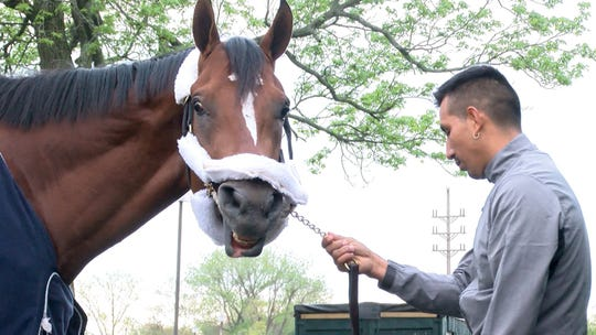 Maximum Security is shown at Monmouth Park on Tuesday morning