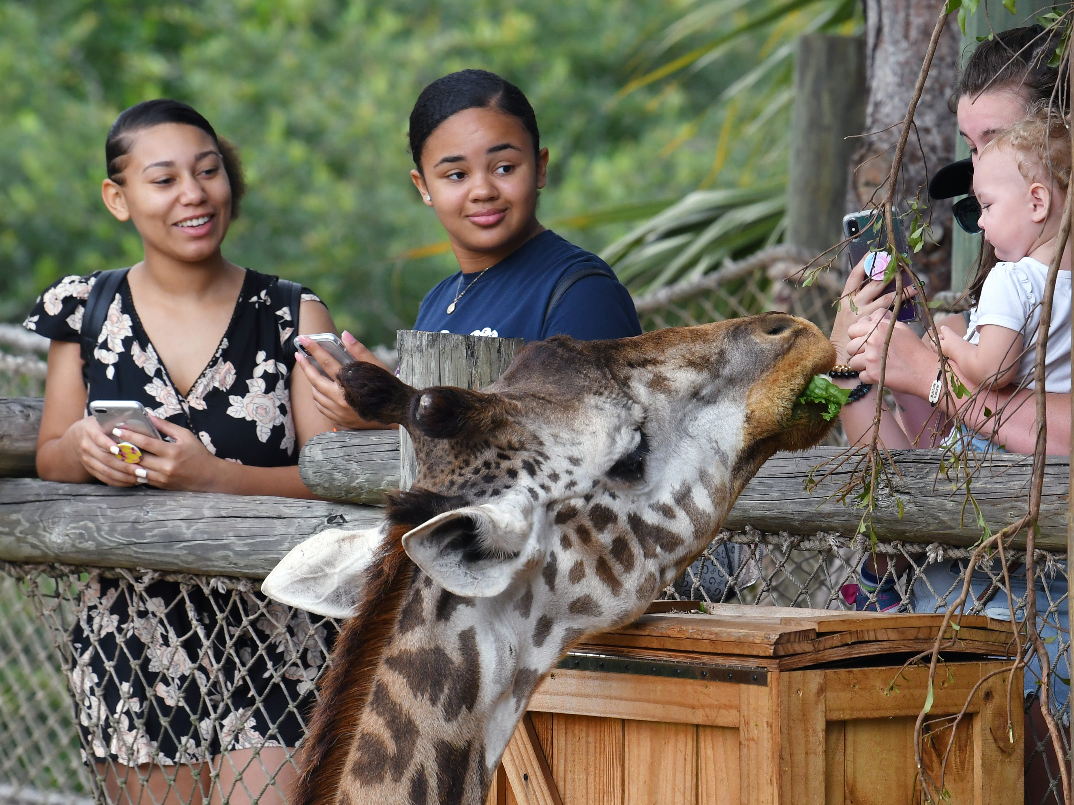 The Brevard Zoo in Viera is a popular visit for locals and tourists alike. At left is Sierra Moore of Titisville and Julie Herisse of Melbourne.
