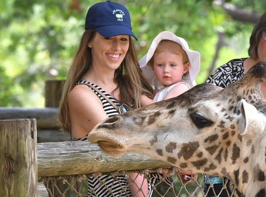 Ashton Lindberg of Atlanta, and her daughter, Belle, who is 21 months old, were checking out the giraffes during their visit to the Brevard Zoo in Viera on Thursday.