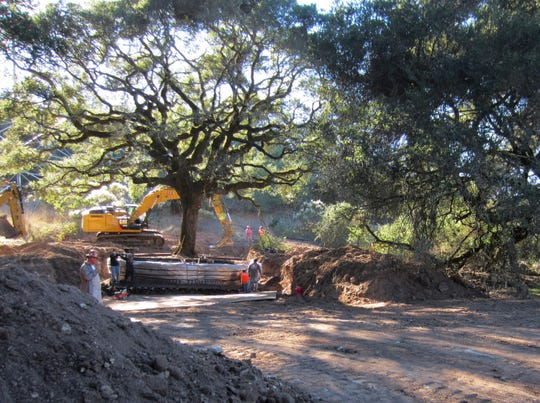 This undated photo provided by the Sonoma Land Trust shows a 180-year-old heritage oak tree being excavated from an easement property in Sonoma, Calif.