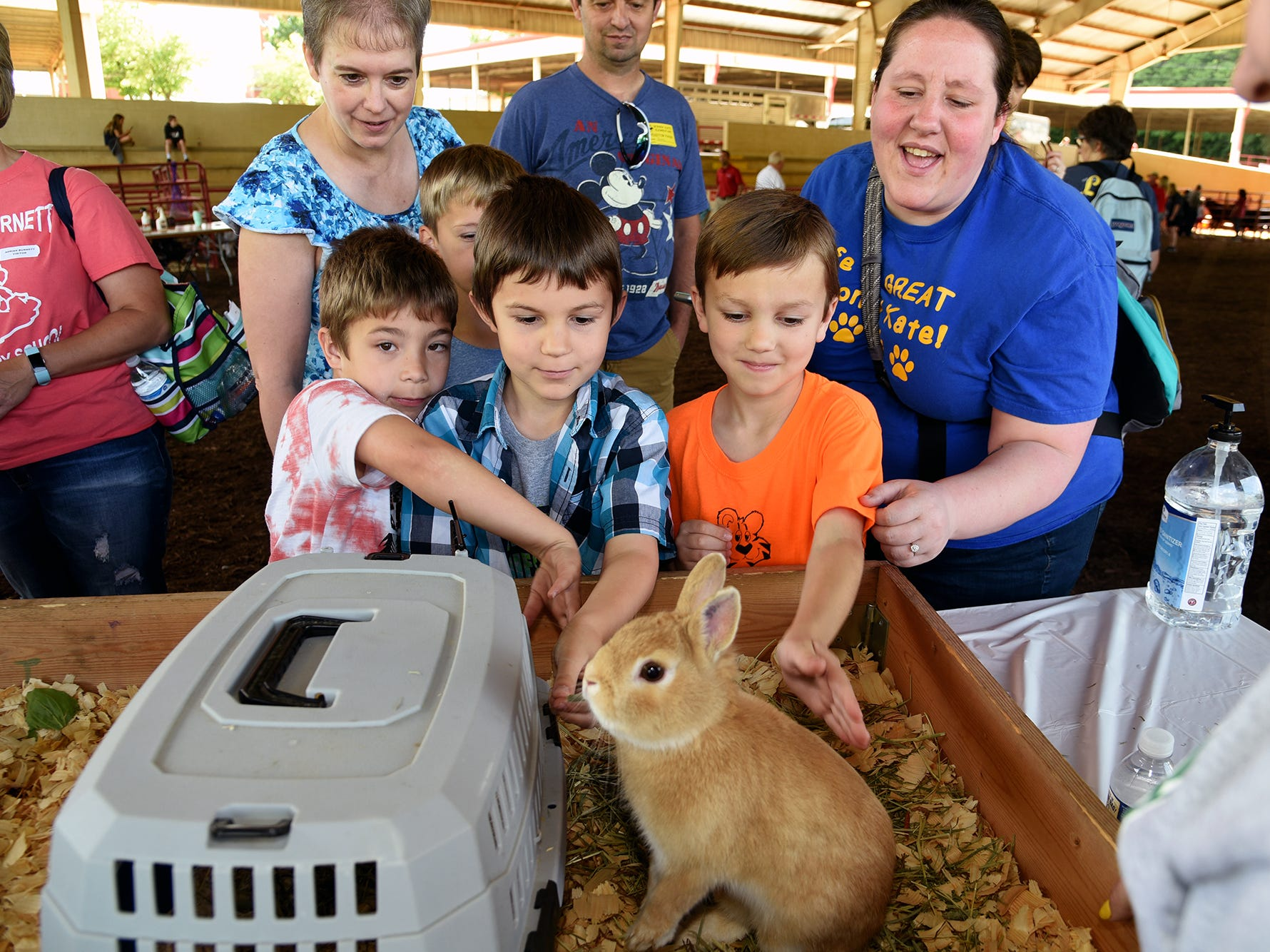 Schoolchildren crowd in to pet a Netherlands dwarf rabbit, part of Farm Day at Chilhowee Park. Over 600 Knox County School children attended the annual Knox County Farm Bureau Ag in the Classroom Farm Day at Chilhowee Park Tuesday, May 7, 2019.