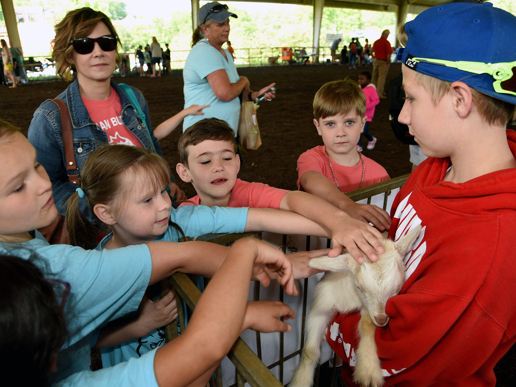 Brayden Eliott, right, holds a pygmy goat for Knox County students to pet. Over 600 Knox County School children attended the annual Knox County Farm Bureau Ag in the Classroom Farm Day at Chilhowee Park Tuesday, May 7, 2019.