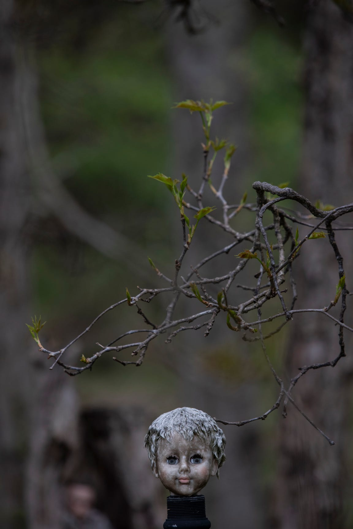The head of a weathered doll becomes part of the scenery at the Home for Wayward Babydolls. April 19, 2019