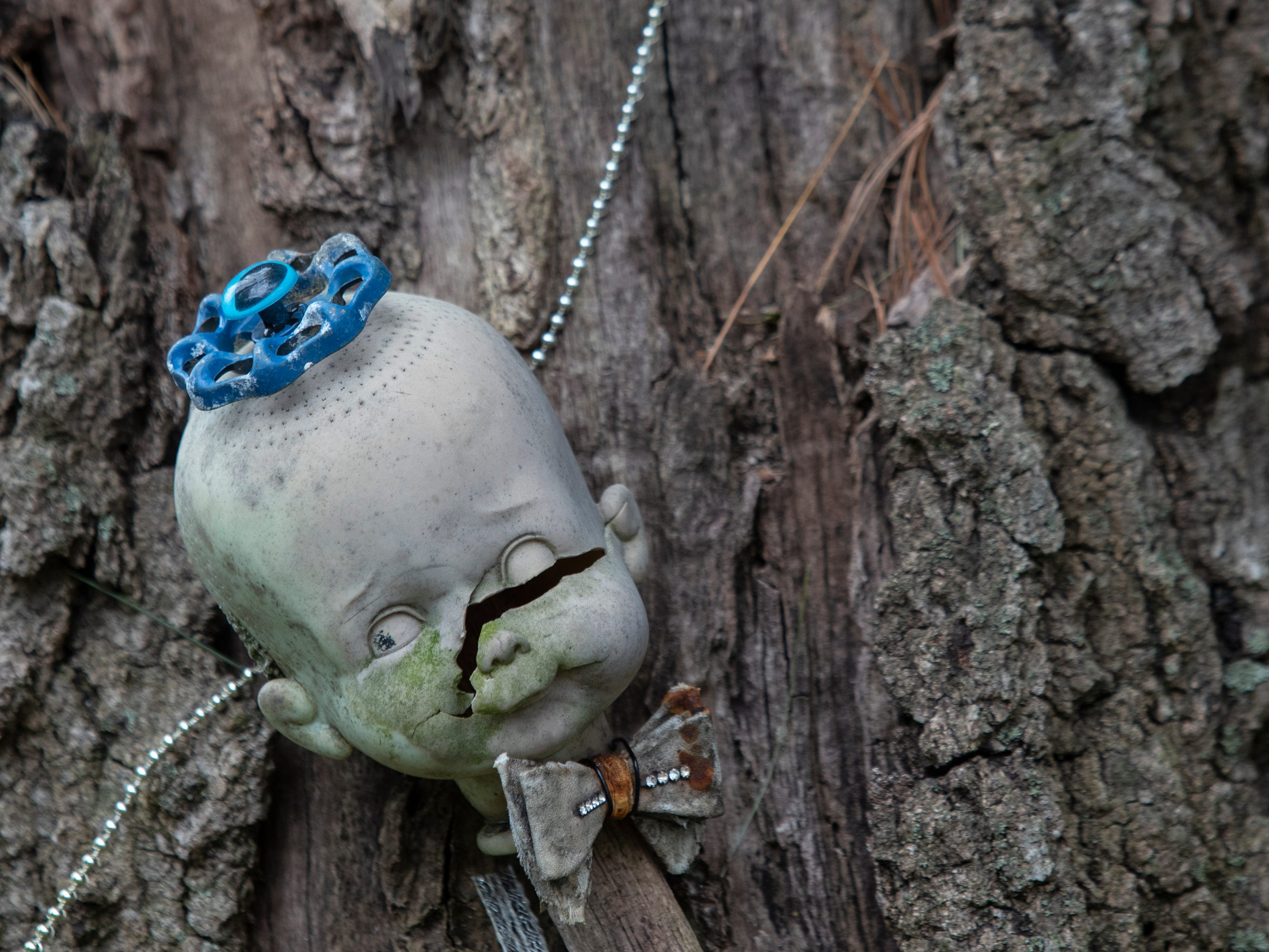 The head of a doll has the handle of a spigot on its head and is attached to a tree at the Home for Wayward Babydolls. April 19, 2019