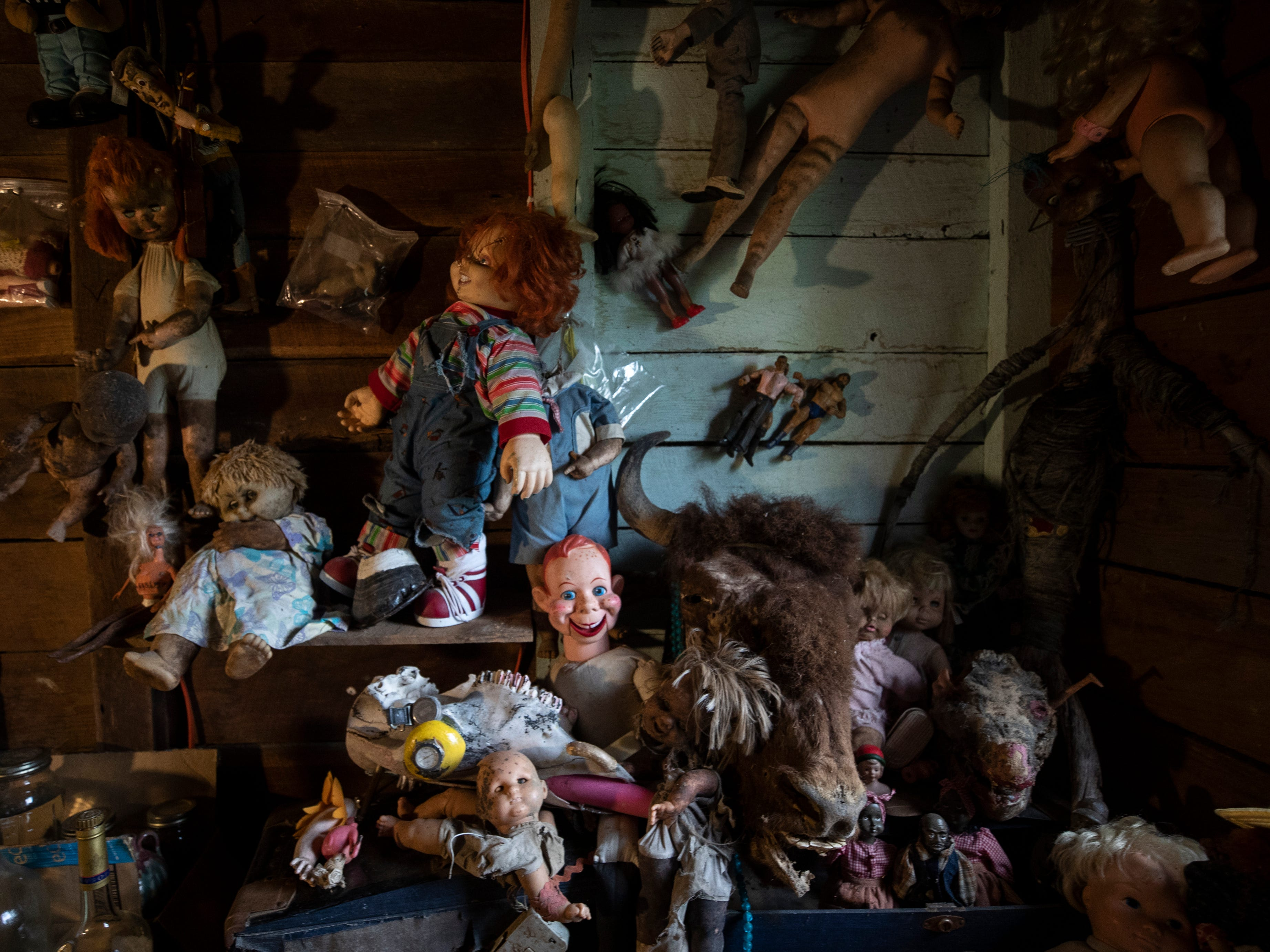 A group of dolls in the Curation Facility #1, at the Home for Wayward Babydolls. April 19, 2019