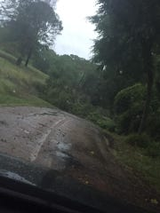A tree down across Guyton Swamp Road in Calhoun on Wednesday.
