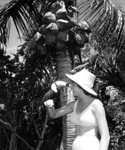 A young woman holds a toucan at Caribbean Gardens in 1962. Now known as the Naples Zoo, it is celebrating its 50th year as a zoo and 100th year as a botanical garden.