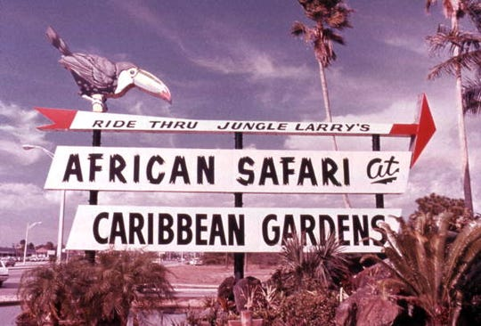 A sign on U.S. 41 directs visitors to the African Safari at Caribbean Gardens in this undated photo. Renamed the Naples Zoo, it is celebrating its 50th year as a zoo and 100th year as a botanical garden.