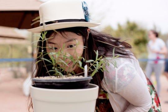 Es un escenario ideal para aprender sobre las diferentes especies de plantas que se abren paso entre el clima extremo y la poco agua de la región.