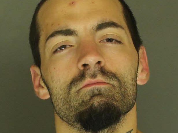 Adam Geesey, arrested for theft from a motor vehicle, access device fraud, receiving stolen property, and possession of drug paraphernalia.