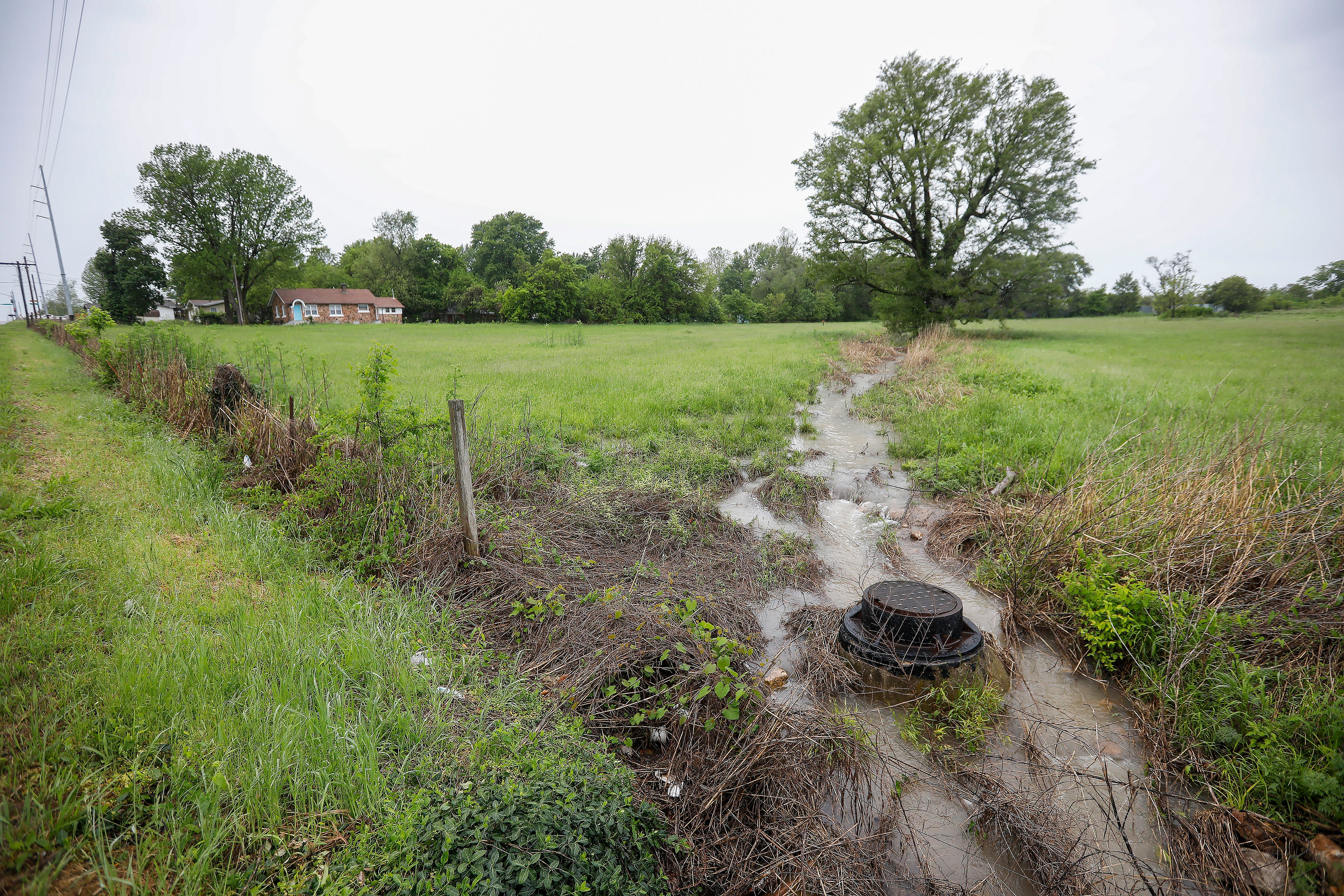 Stormwater flows through the center of the 5 acre lot at 3303 W. Division St., on Wednesday, May 8, 2019. This plot of land may house Eden Village II, a community of tiny houses for the chronically homeless.