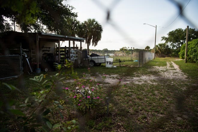 An adult volunteer was found dead at the Humane Society of St. Lucie County facility off Savannah Road in Fort Pierce on Thursday, May 9, 2019, after Fort Pierce police responded to a report of a dog bite. The investigation was focused outside, near where the body was removed.