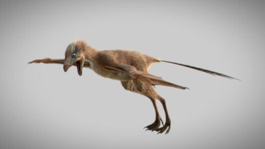 An artist's 3-D reconstruction of the newly discovered dinosaur with bat-like wings.