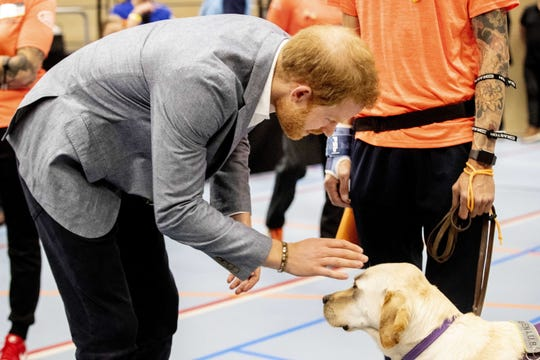 Prince Harry greets a service dog during the launch of the Invictus Games The Hague 2020, in The Hague, The Netherlands, May 9, 2019.